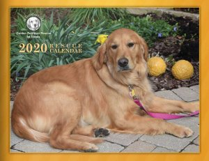 2020 Rescue Calendar