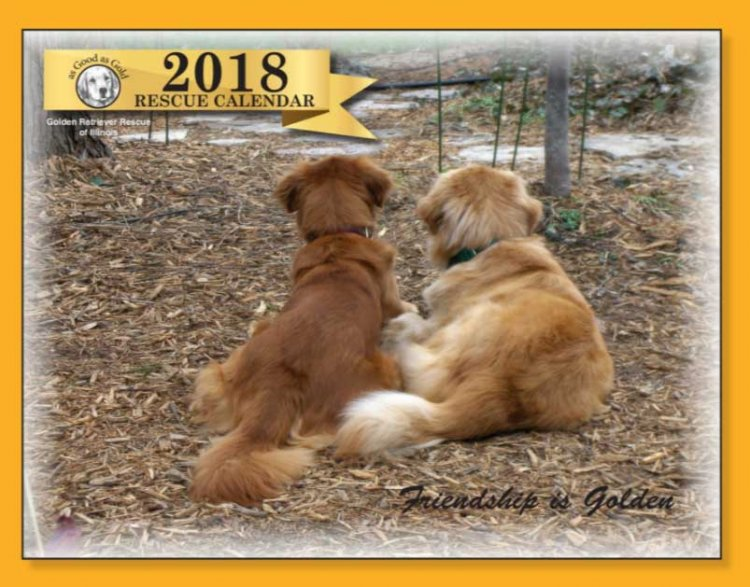 2018 As Good as Gold Rescue Calendarg