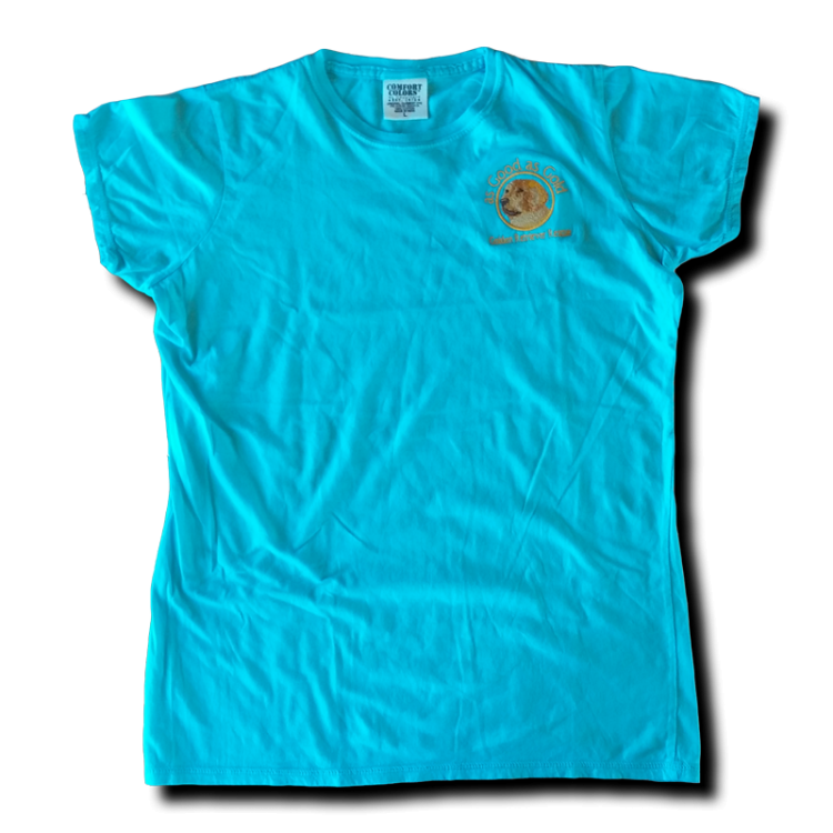 Logo Short Sleeve T-Shirt - Lagoon - Click Image to Close
