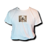 a tail we could wag Short Sleeve T-Shirt - White