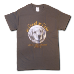 As Good As Gold Logo T-Shirt - Charcoal Gray