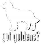 Window Decal - Got Goldens