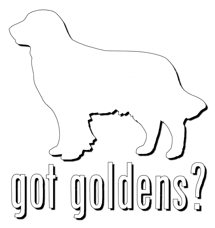 Window Decal - Got Goldens - Click Image to Close
